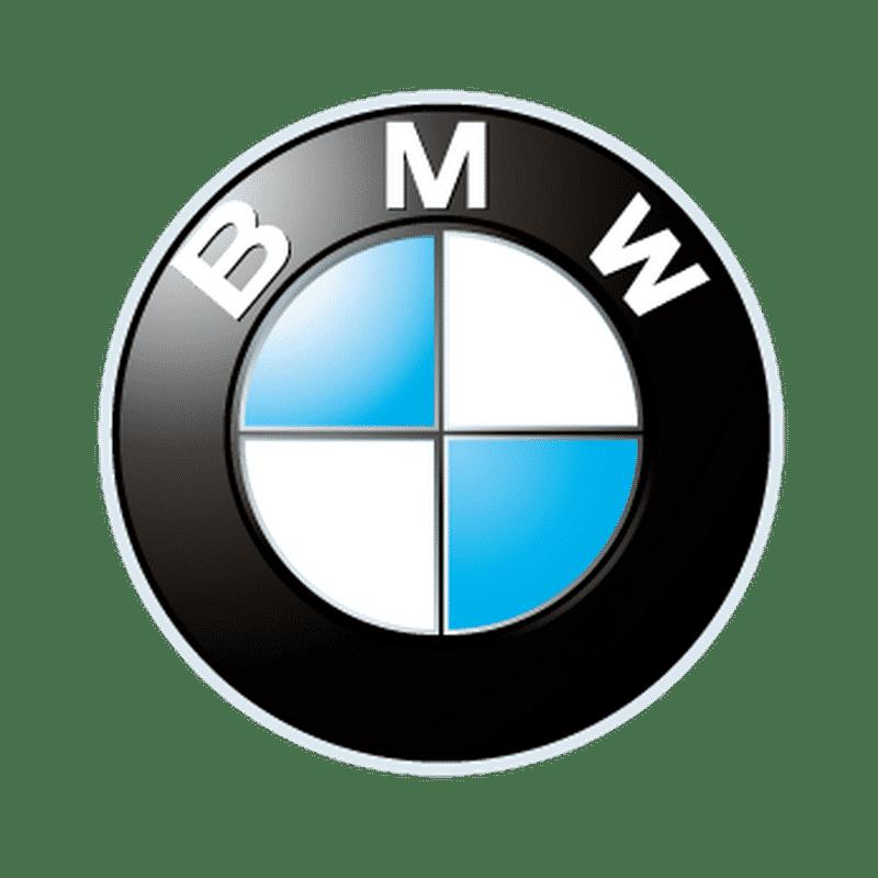 bmw cars são paulo transfer