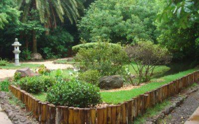 Maringá: Locação de Van até a Cidade Jardim